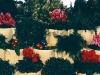 bloctalusgarden1