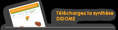 Téléchargez la synthèse DIDOME au format pdf